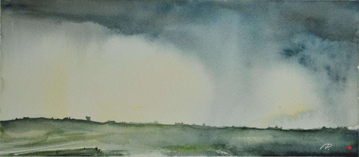 Felder im Regen