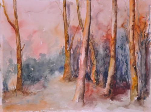 Wald in untergehender Sonne